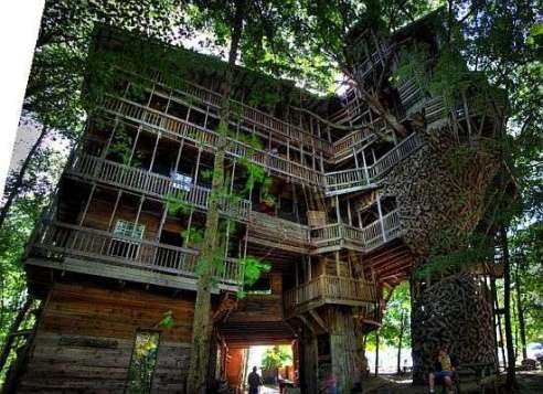xworlds-tallest-tree-house.jpeg.pagespeed.ic.Ze5O20Bmn8